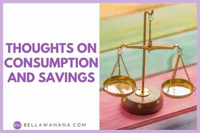 Thoughts on Consumption and Savings